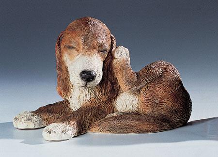 10. F249 setter cucciolo