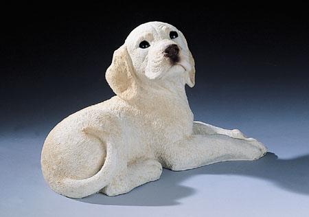 16. F340 labrador cucciolo