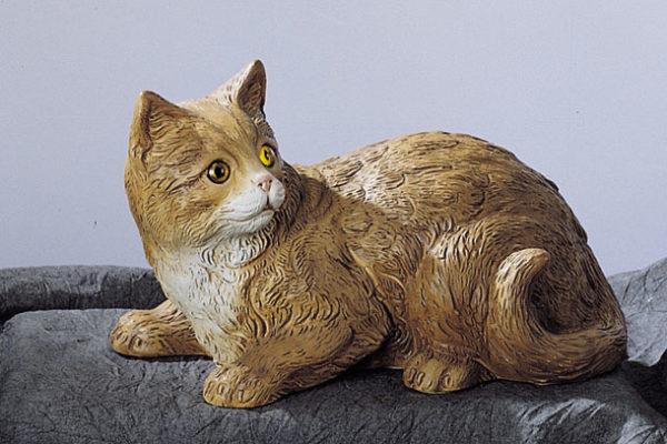 31. F41M gatto sdraiato