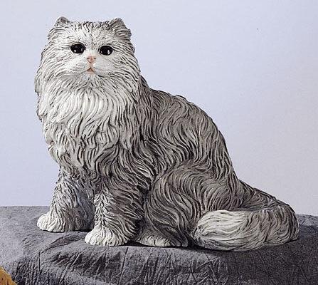 34. F231G gattino persiano seduto
