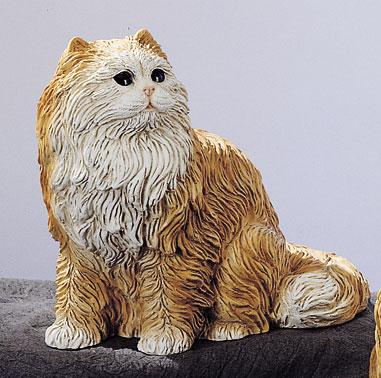 35. F231M gattino persiano seduto