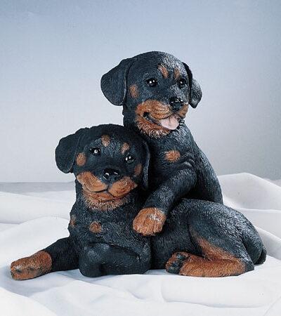 36. F376 coppia rottweiler cuccioli