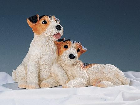 37. F377 coppia terrier cuccioli