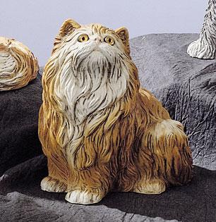 40. F45 gatto persiano