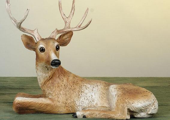 50. F148 cervo